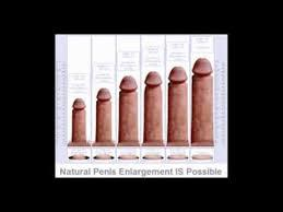 Penis enlargement creams from Mutuba seed for enlargement call +27737053600